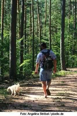 Wandern mit Hund - Outdoor